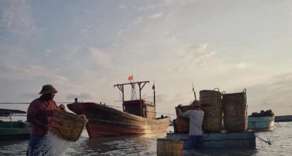 拍客 | 海南乐东:渔耕归来海岸忙